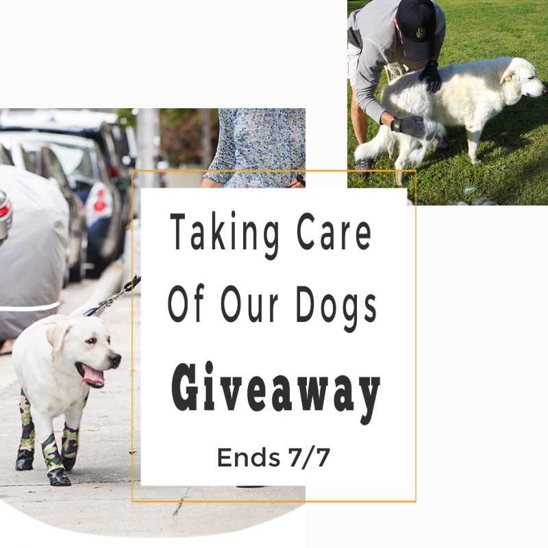 Taking Care of Our Dogs Giveaway