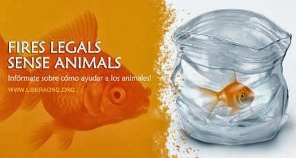 """""""FIRES LEGALS SENSE ANIMALS"""""""