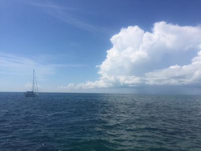 Snorkel Sombrero Reef