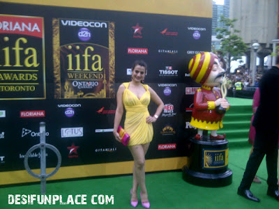 Amisha Patel In Yellow Drew