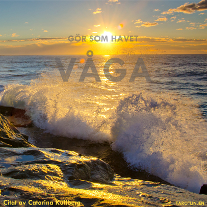 Havet som økosystem
