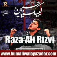 http://ishqehaider.blogspot.com/2013/11/syed-raza-ali-rizvi-nohay-2014.html
