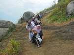 BROGA HILL