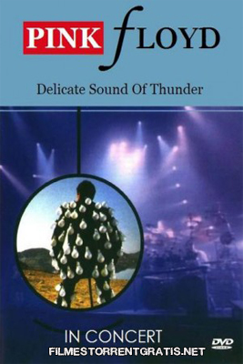 Pink Floyd: Delicate Sound of Thunder – In Concert (1988) DVD R   Torrent Torrent Grátis