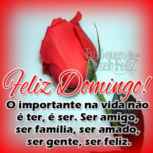 O importante na vida não  é ter, é ser. Ser amigo,  ser família, ser amado,  ser gente, ser feliz.