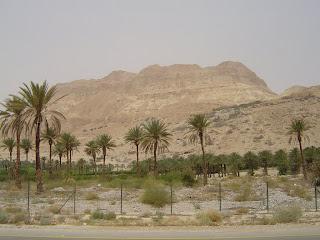 Dead Sea -  Ein Gedi Nature Reserve