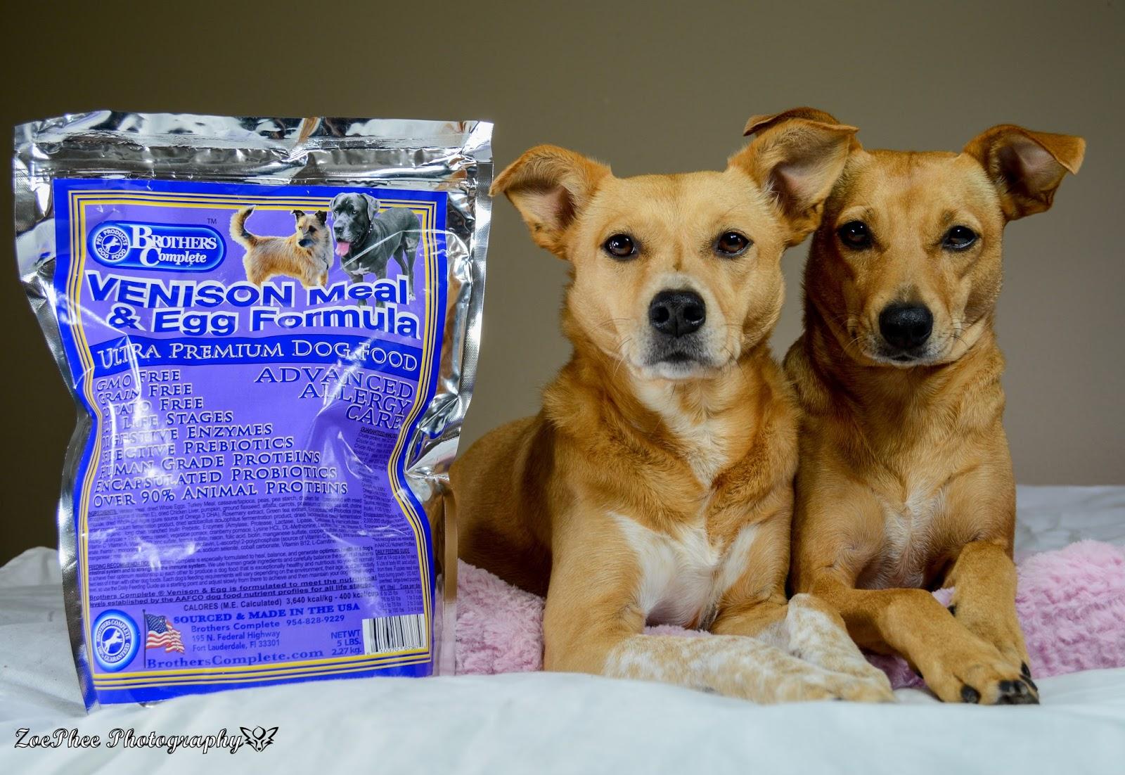 premuim dog food American natural premium navigation dog food original recipe lamb meal & rice recipe sensitive care endurance plus exhibitor's choice basic formula.