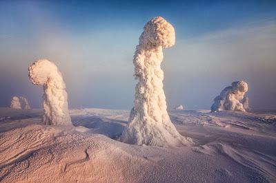 Стражи Арктики Николо Бонфандини