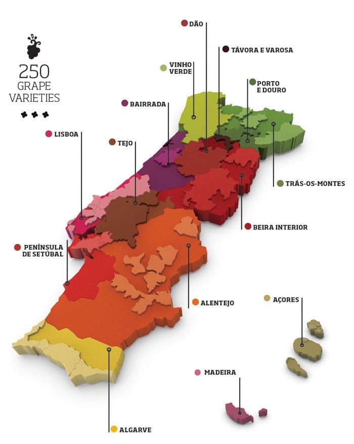 Mapa da VIticultura de Portugal