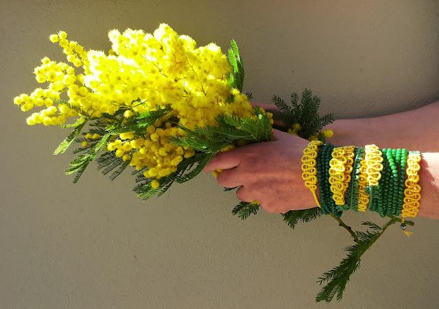 mimosa tra le mani