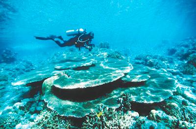 5 Lokasi Wisata Pantai Di Indonesia Paling Eksotis