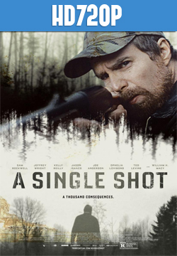 A Single Shot HD 720p Subtitulado 2013