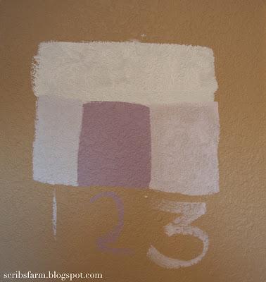 HGTV Paint