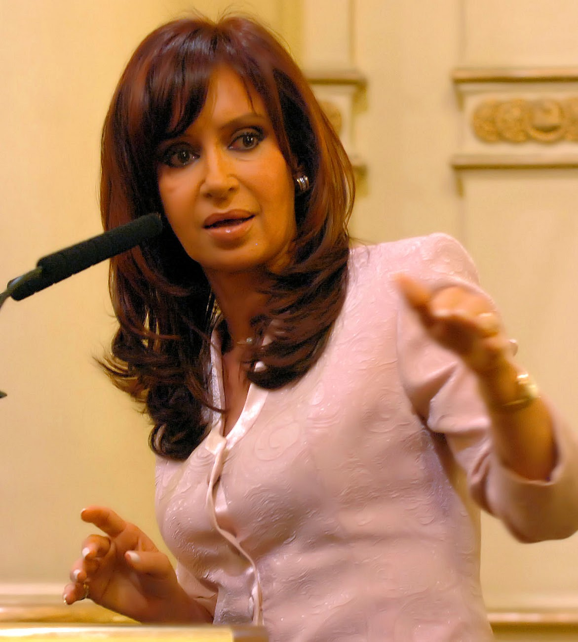 http://4.bp.blogspot.com/-6XF9Ecuk7r0/UOPUxDh03WI/AAAAAAAAAp4/fwCGSJrXMEo/s1300/Discurso_de_Cristina_Fern%C3%A1ndez_el_25_de_marzo_2008.jpg