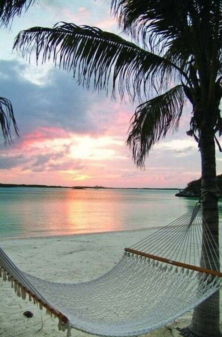 Pink sunset under a palm tree and in a hammock, paradise