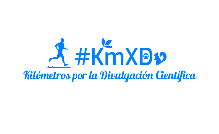 #KmXD
