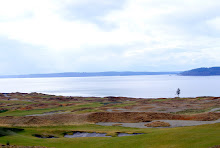 Chambers Bay, in University Place