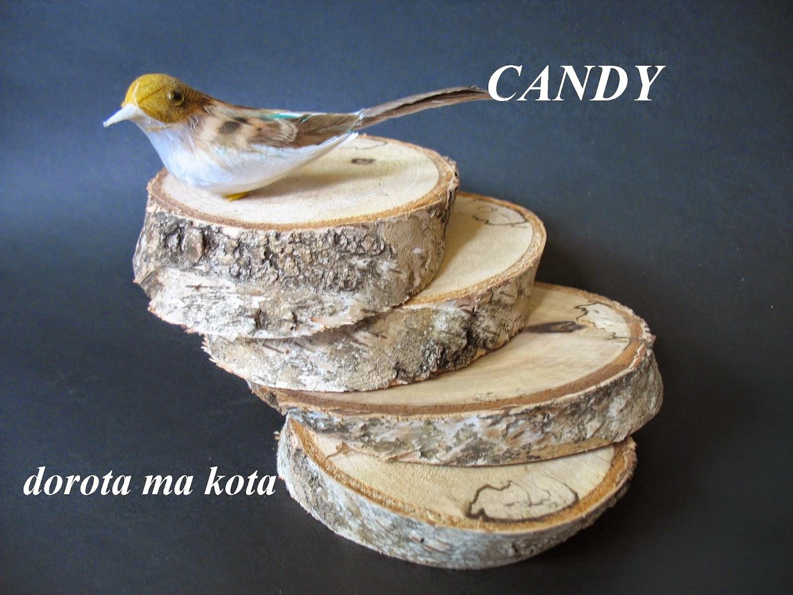 Brzozowe candy u Doroty