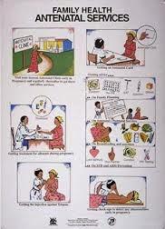 Cara Menentukan Masa Kesuburan Wanita