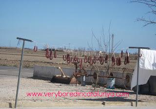 www.veryboredincatalunya.com