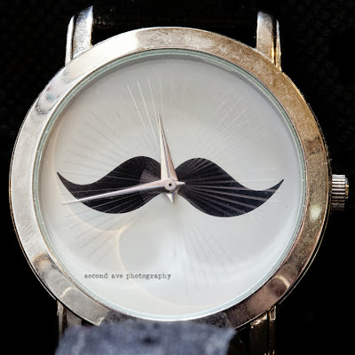 blog hop, clock, imagine dragons, music, mustache, photoblog, project 52, quote, time, time lapse, Virginia photographer, watch, 100mm f/2.8 Macro, macro photography, canon,