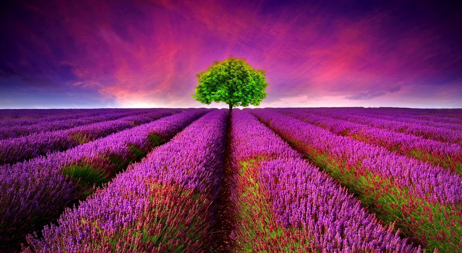 beautiful nature wallpapers collection | most beautiful places in