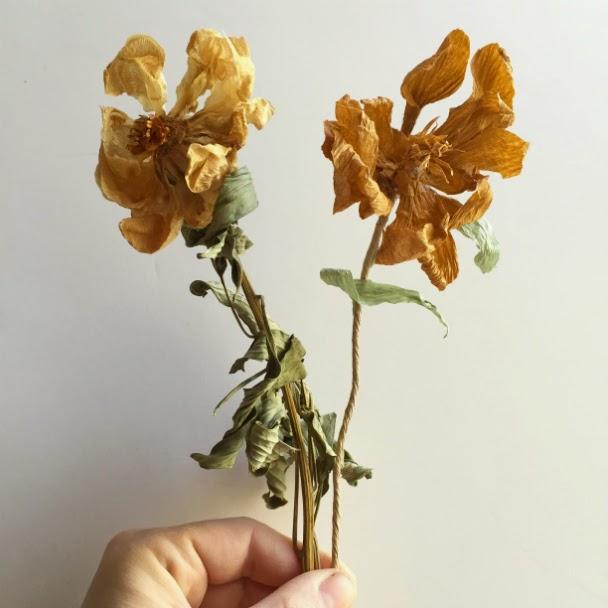 Corner blog dead paper flowers img8620altg mightylinksfo