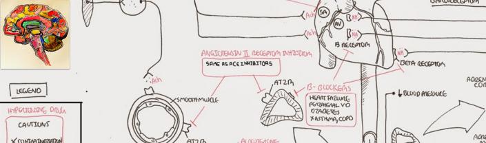 Fisiopatología de la enfermedad de Parkinson en trece minutos ...