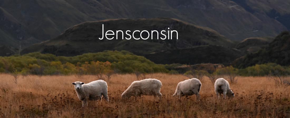 Jensconsin