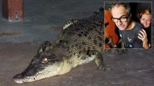 ماذا تفعل لو وجدت تمساحا فى صالونا لمنزل عند إستيقاظك من النوم !!