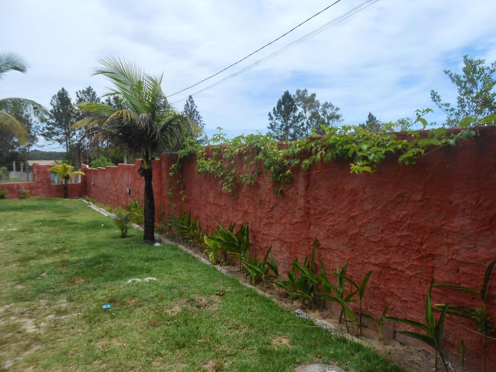 muro frente
