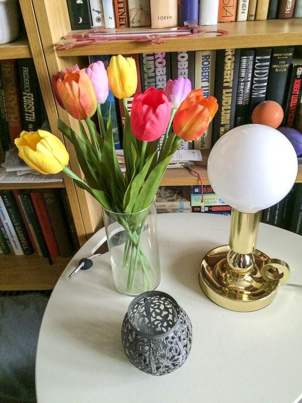 tulpaner, tulips