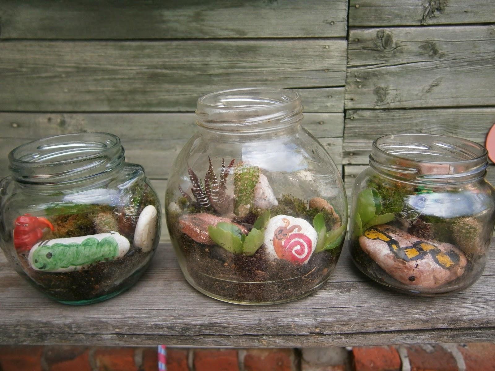 растения в бутылках.