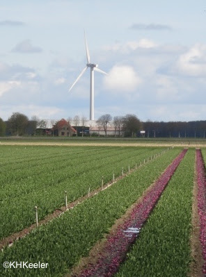 wind turbine, the Netherlands
