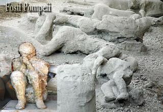 Fosil Pompeii