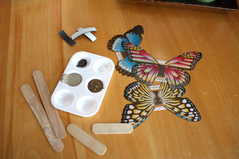 Butterfly craft projects seattle sundries for Small magnets for crafts
