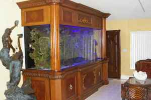Giant Aquariums 900 Gallon Custom Reef Aquarium 48000