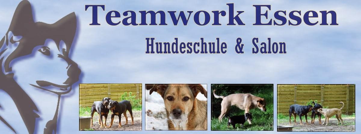Teamwork Essen