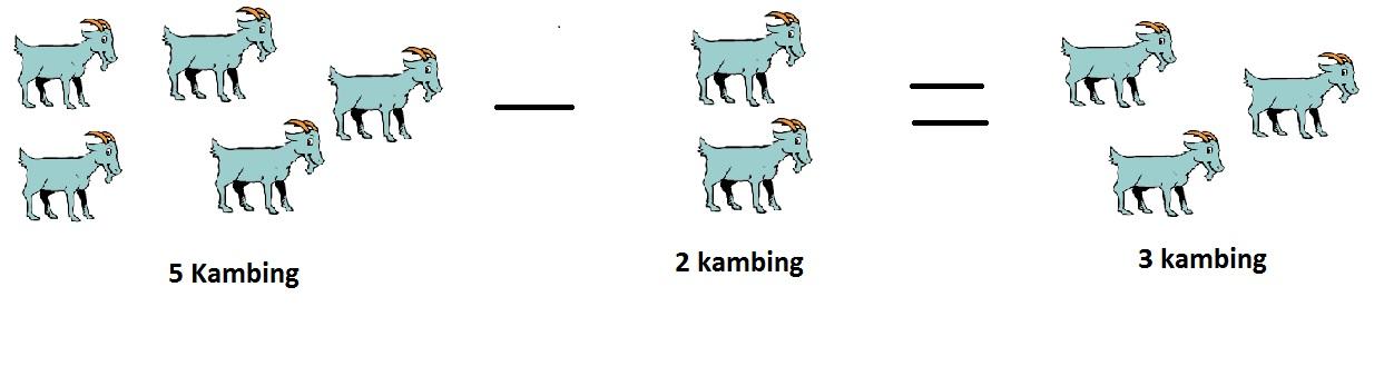 kambing