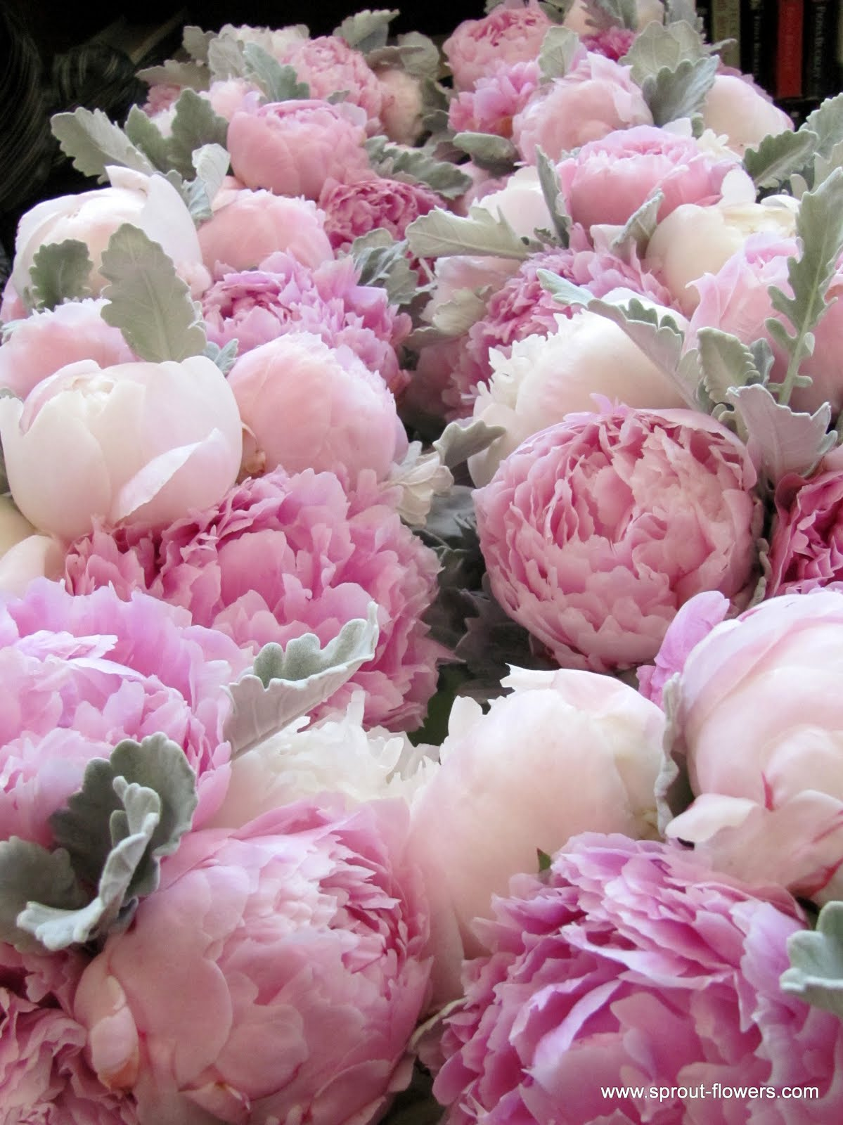 you to do a peony wedding during peony season you say yes please