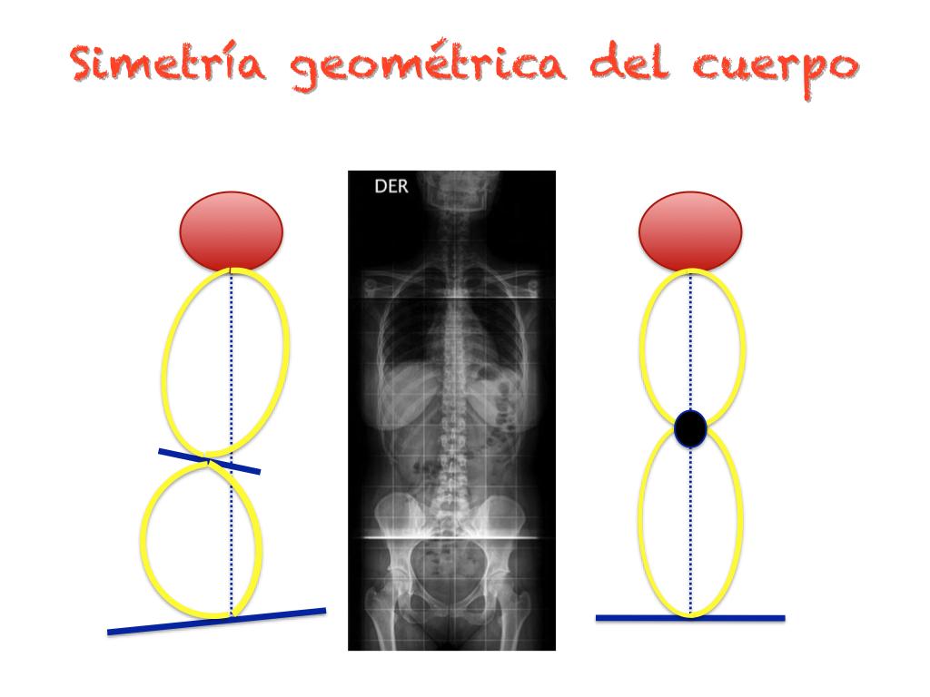 TALLERES ESPALDA FEB 2012.m4v | Educación Funcional para el ...