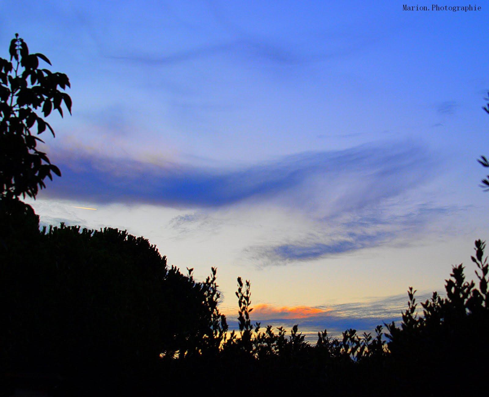 Marion photographie d 39 une beaut blouissante - Paroles j ai attrape un coup de soleil ...
