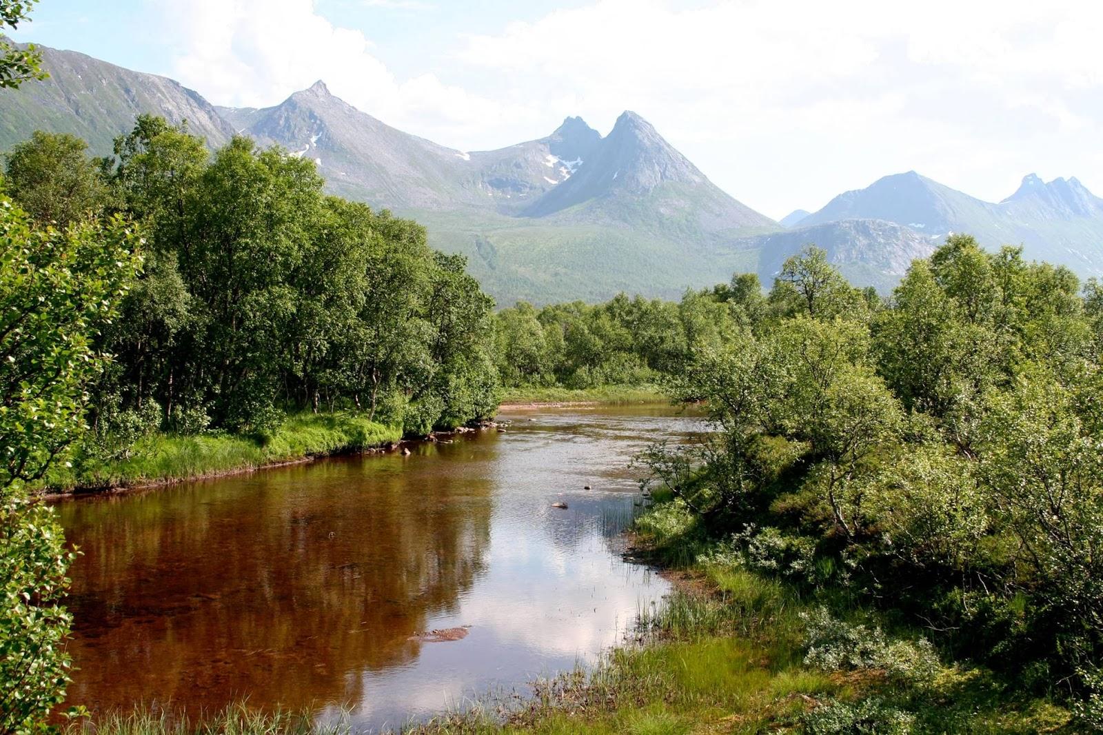 Lofoten – Amazing Arctic Circle Anomaly