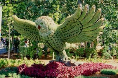bird made from grass