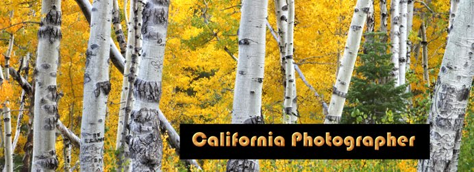 California Photographer