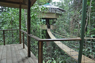 Damn Cool Pics: Finca Bellavista: Incredible Tree House Community in Costa Rica