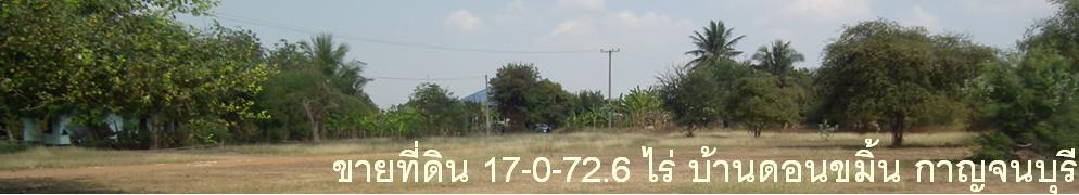 ขายที่ดินกาญจบุรี บ้านดอนขมิ้น  ท่ามะกา