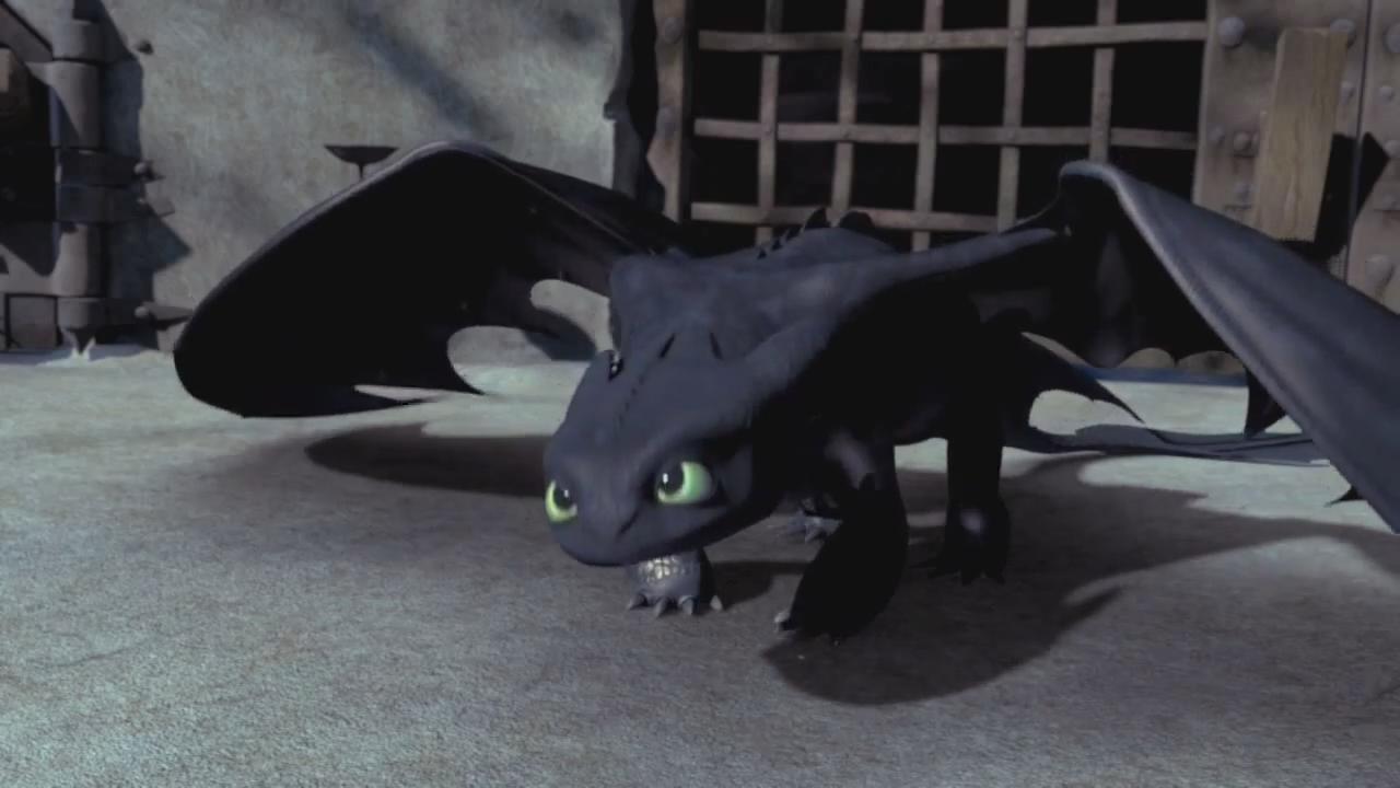 fans de como entrenar a tu dragon