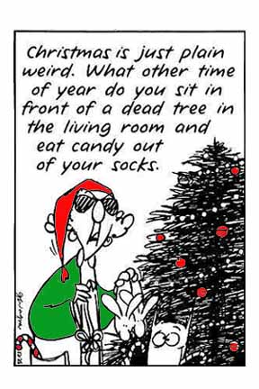 Email Forwards Fun!: Maxine on Christmas
