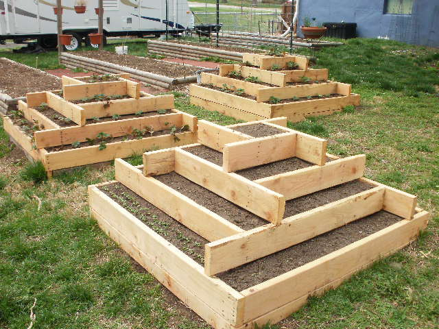 Garden tuesday first day of spring haphazard homestead for Tiered garden designs